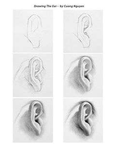 Image result for realistic ear drawing step by step