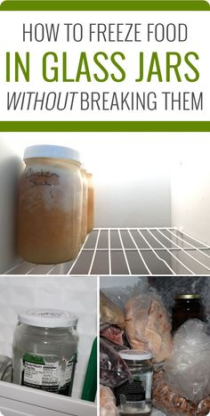 How to freeze food i