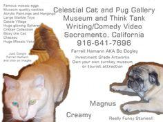 Celestial Cat and Pug Gallery. #Sacramento, CA