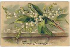 Catherine Klein Lily of the Valley by kelleystreetvintage on Etsy