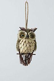 Sprig & Spruce Owl
