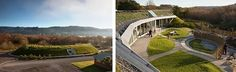 Green roofed school, Te Mirumiru in Kawakawa, Northland, NZ