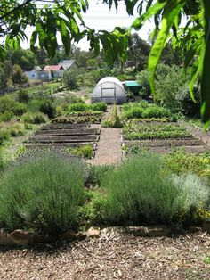 Ceres - Organic Farm Ceres Organics, Organic Farming, Live, Garden Bridge, Good Times, Sustainability, South Africa, The Neighbourhood, Places To Visit