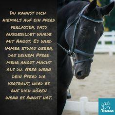 #pferdepflege, #pferdezubehör, #mineralfutter im www.emma-pferdefuttershop.de