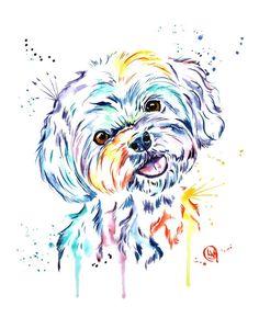 Perro Shih Tzu, Shih Tzu Puppy, Animal Paintings, Animal Drawings, Maltese, Animal Art Prints, Dog Tattoos, Dog Photography, Dog Portraits