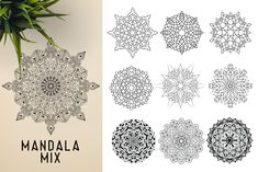 This bundle contains 300 unique vector Black & White mandala designs (some have clean lines and some have an organic look to have a more hand made feel to it) - Geometric Tattoo Sleeve Designs, Sacred Geometry Symbols, Indian Mandala, Paper Ornaments, Ancient Civilizations, Texture Painting, Mandala Design, Graphic Illustration, Illustrations