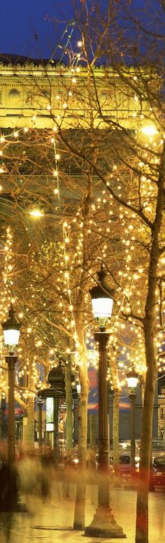 Gold:  #Gold lights at the holidays in Paris.