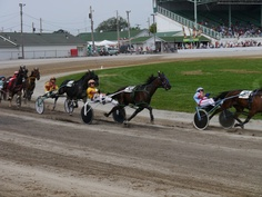 The pacers cut through the track in the first turn of Race 2 on Sept 2012 at the Mahoning Co. Fair in Canfield, Ohio. Race Horses, Horse Racing, Canfield Fair, Horse Mane Braids, Lippizaner, Olympic Equestrian, The Pacer, Tennessee Walking Horse, Youngstown Ohio