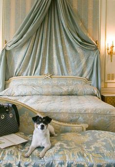 A Glimpse of a Room at Le Meurice, Paris