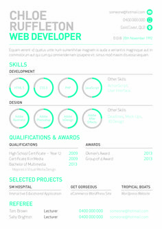 web developers resume with mini info graphs by melissa mcarthur httpbe