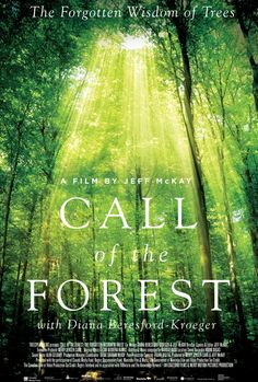 Watch Call of the Forest: The Forgotten Wisdom of Trees Online | Vimeo On Demand on Vimeo