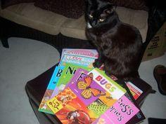 reading is fundamental for felines :)
