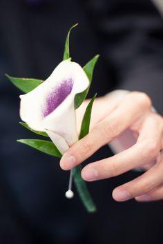purple calla lily boutonniere - Google Search