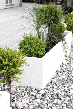 Amazing wooden garden planters ideas you should try 16 – Garten Ideen Back Gardens, Outdoor Gardens, Wooden Garden Planters, Front Yard Planters, White Planters, White Planter Boxes, Modern Planters, Front Yard Landscaping, Landscaping Ideas