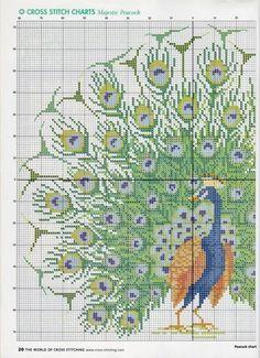 peacock+cross+stitch+patterns | Saretta in serendipity....cricetinacrea: Peacock cross stitch pattern