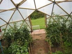 geodesic dome greenhouse #rrrgreenhouse