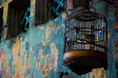 Birdcage, The Old Quarter, Hanoi