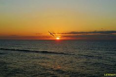 Outer Banks NC Local Artists Facebook post 5/28/15:  Sunrise over Hatteras Island.  Photographer credit: Mark Lemmon.