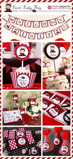 Ladybug Baby Shower1 More