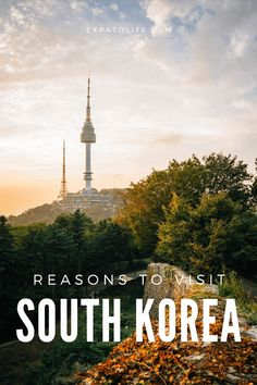 South Korea may be overlooked by many visitors to Asia, but you shouldn't make the same mistake. Here are ten reasons why you should visit South Korea at least once! #SouthKorea #travelguide Travel Guides, Travel Tips, Travel Plan, Travel Advice, China Travel, Japan Travel, Amazing Destinations, Travel Destinations, South Korea Travel