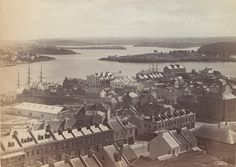 HISTORY: The view from Observatory Hill in 1882 with Goat Island on the right (image courtesy City of Sydney Archives) Sydney City, Sydney Harbour Bridge, The Rocks Sydney, Bronte Beach, Historical Images, Historical Architecture, Old Photos, Paris Skyline, Old Things