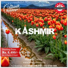 Amazing Kashmir @ 8,499/- P.P for 4 Nights, 5 Days. #summer #holiday #kashmir #heavenonearth #package 