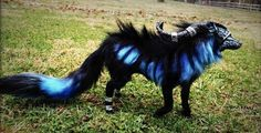 Sculptor Wood-Splitter-Lee creates furry and feathered beasts that are strikingly unnatural: wolf-stag hybrids, cats covered in butterfly wings, and masked wolves with blue and green fur