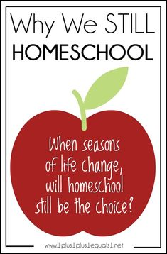 Why we STILL Homeschool ~ even though many of our original reasons have now changed.