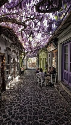 Quaint cobblestone alley in Mithymna ~ Lesbos, Greece .... Wonderful wisteria