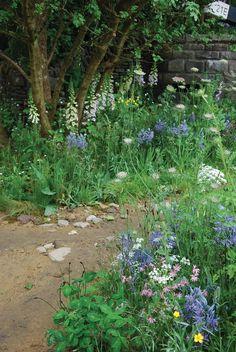 Her finder du også 7 gode råd til en mere klimavenlig have. Garden Show, Dream Garden, Balcony Garden, Garden Plants, Classic Garden, Garden Fencing, Farm Gardens, Plantation, Trees And Shrubs