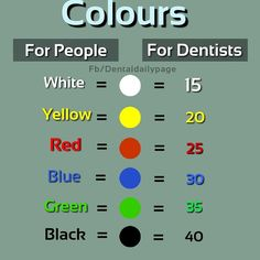 Dental World, Dental Life, Dental Assistant Study, Dental Pictures, Dental Anatomy, Tooth Chart, Perfect Teeth, Korean Babies, Student Studying
