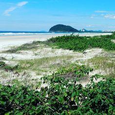 Fisionomias de restinga litorânea no Estado de São Paulo! Uma bela paisagem para começar a semana de trabalho! Escritório de hoje!  Restinga (sandland) physiognomies in Sao Paulo!  Today's desk 🏖️🏢☀️#work #job #biology #bio #botany #botanic #botanico #sand #sandland #beach #praia #mar #brazil #brasil #blue #natureza #naturephotography #trabalho #areia #lindo #verde