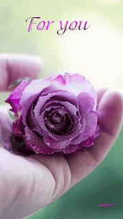 A rose for you my love. A rose for you Flowers Gif, Love Flowers, Dahlia Flower, Purple Flowers, Red Roses, Rosas Gif, Rose Violette, Glitter Girl, Glitter Graphics
