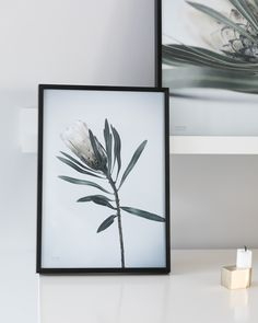 PURE poster🌿  http://posterhouse.no/produkt/pure/