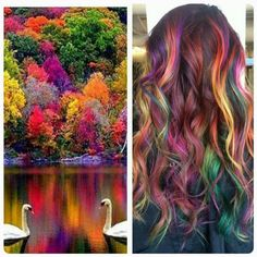 4920 Likes 101 Comments Mermaid Hair Makeup & Fashion (Caitlin Davis) on Ins Carmel Hair Color, Hair Color Dark, Cool Hair Color, Bright Hair Colors, Fall Hair Colors, Colourful Hair, Fantasy Hair Color, Pelo Multicolor, Balayage Color