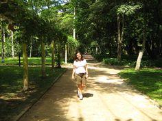 Jardim Botânico - um dos pulmões do Rio de Janeiro - Brasil