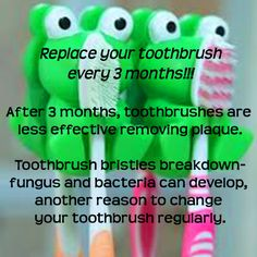 Did you know that you are suppose to..... Dr. Marc E. Goldenberg, Dr. Kate M. Pierce, and Dr. Matthew S. Applebaum Pediatric Dental Office Greensboro, NC