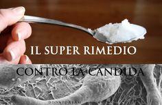 Un super rimedio naturale contro la Candida | Terra2000