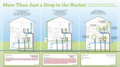 greywater vs. rainwater harvesting vs. retrofitting...