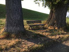 Am Rhein zwischen Kläranlage und Petersau
