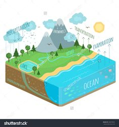 Water Cycle Diagram rain, tree, soil, precipitation, transpiration, river, earth, cloud, groundwater, vapor, vector, diagram, representation, graphic, evaporation, lake, level, sun, flat, cycle, circulation, illustration, chart, underground, science, schematic, fall, sky, education, geography, evaporates, sea, water, nature, land, ground, environment, particles, geology, hydro, landscape, ocean, isometric vector, isometry