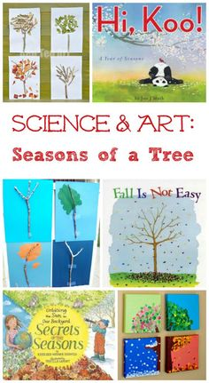 Great books & art projects that explore the science of how a tree changes thru the seasons! Excellent STEM activity