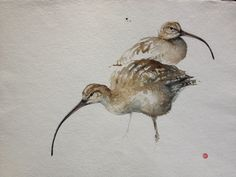 Karl Martens Print | Curlews - Gladwell & Patterson