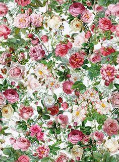 Designtapete mit einem romantischen Rosenmuster. Das Blumenmeer in rosa und weiß weckt nostalgische Erinnerungen an den Duft von Rosen und das frühlingshafte Erwachen der Natur. Das klassische Rosenmuster der Designerin Barbara Behr gibt dem Raum eine natürliche Note.