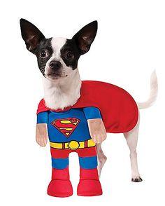 39f71140ca Superman Dog Costume - DC Comics - Spirithalloween.com. Pet Costumes ...