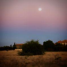 Full moon in Africa. Moon Rise, Full Moon, Dusk, Africa, Celestial, Sunset, Nature, Photos, Photography