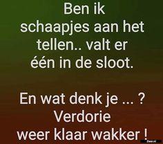 Ben ik schaapjes Dutch Quotes, Funny Qoutes, Adhd, Short Film, Sarcasm, Texts, Laughter, Funny Pictures, Jokes