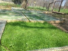 How to reseed the chicken run without removing the chickens. I have a feeling this will come in handy in the future!