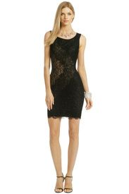 Lace At Its Best Dress by Haute Hippie