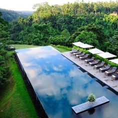 Alila Ubud, Bali - Awesome pool - awesome landscape=I would be heaven with this pool in my backyard! Ubud, Outdoor Pool, Outdoor Spaces, Outdoor Living, Pool Spa, Beautiful Pools, Beautiful Places, Simply Beautiful, The Places Youll Go